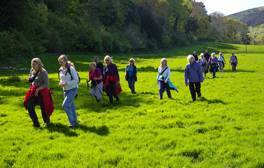 Explore Exmoor on foot at its annual walking festival