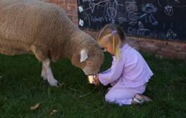 Take an animal-themed weekend in Devon