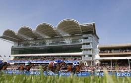 Heed the thunder of galloping horses at The QIPCO Guineas Festival