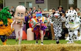 Discover, explore, taste and enjoy at the Suffolk Show