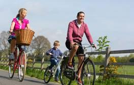 Cycle alongside the Exe Estuary