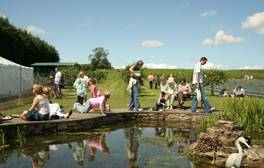 Take a tasty farm food trail through the Tyne Valley