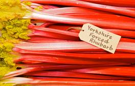 Learn how to cook rhubarb with British chefs