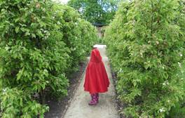 Magical family holidays in The Alnwick Garden