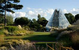 Get lost in the picturesque Royal Botanic Gardens