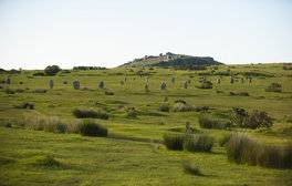 Explore the rugged wilderness of Bodmin Moor
