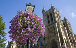 Immerse yourself in the history of Bristol Cathedral