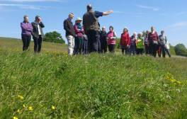 Stroll around Bristol with month-long celebration of walking