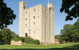 Join Hedingham Castle for a historical celebration of Magna Carta