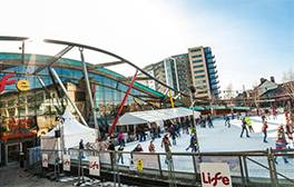 Enjoy winter ice skating at the Centre for Life