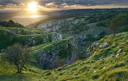 Join the Bat Patrol at Cheddar Gorge
