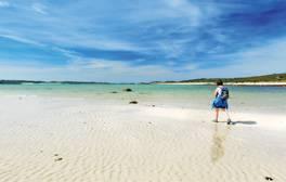 Discover an overseas paradise on England's own shores