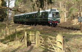 Take an enchanting trip on the Dean Forest Railway