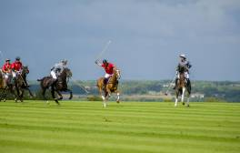 Try your hand at Polo