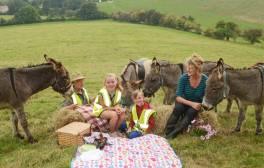 Embark on a family safari in Dorset