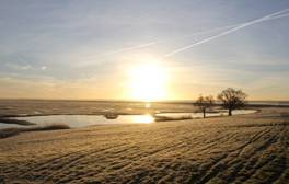 Go glamping in shepherds' huts at Elmley Nature Reserve