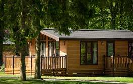 Have some family fun in a forest lodge