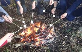 Bushcraft and campfires at Humblescough Farm