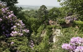 Explore Hawkstone Park Follies fantasy land