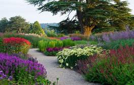 Follow in Capability Brown's footsteps at the Trentham Estate