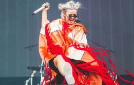 See big-name acts at Wild Life Festival