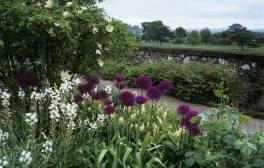 Explore stunning English Gardens in the Heart of Devon