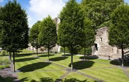 Descend into a medieval Bishop's garden