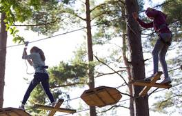 Enjoy Suffolk's scenery from the saddle or high up in the treetops