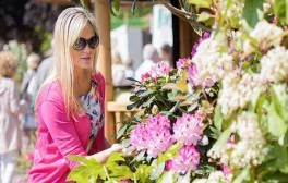 Admire beautiful blooms at Chatsworth's RHS Flower Show