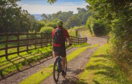 Enjoy tranquil cycling holiday in the Blackdown Hills