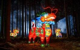 Marvel at the Longleat Festival of Lights