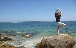 Take a Wellness & Wellbeing Break