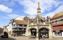 See Salisbury's Amazing Art Festival