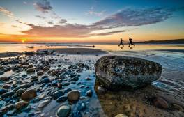 Wander along the Whitehaven coastline