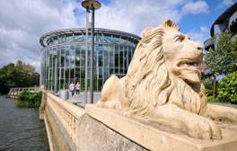 Activities for all ages at Sunderland Museum & Winter Gardens