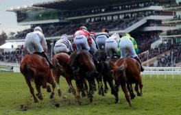 Feel the electrifying buzz of Cheltenham's sporting events