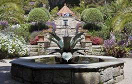 Unterschlupf im subtropischen Tresco Abbey Garden