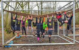 Climb, jump and crawl at Wild Forest Gym