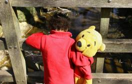 Play Pooh sticks in Ashdown Forest
