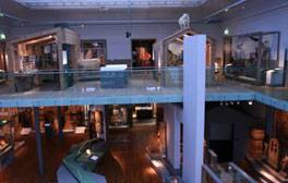 See the world under one roof at Great North Museum