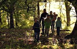 Unleash your inner explorer at Hatfield Forest