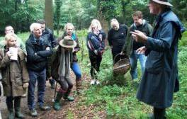 Explore Devon's countryside on a mushroom foray