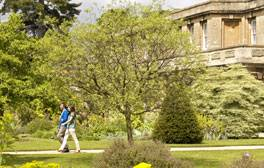 Get close to nature at Oxford Botanic Garden