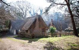 Visit the 17th Century at Little Woodham