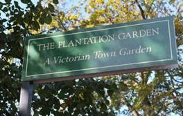 Discover summer romance in a secret city garden