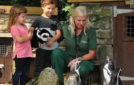 Penguins, picnics and playgrounds at Sewerby Hall and Gardens