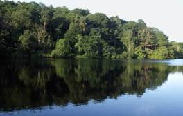 Enjoy a picnic at Colemere park