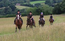 Plan a day of horse riding with Country Treks