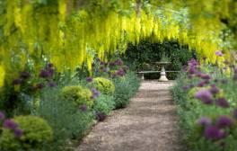 Visit the Dorothy Clive garden