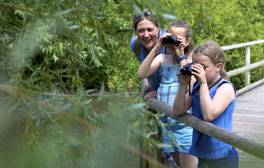 Get closer to wildlife at WWT Slimbridge Wetland Centre